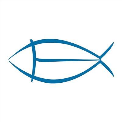 Crevettes crues décortiquées 16/20 pièces pour 800 grammes (congelé)